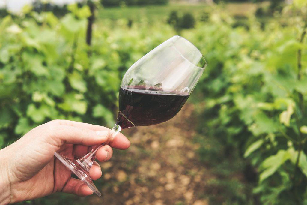 beste rode wijn